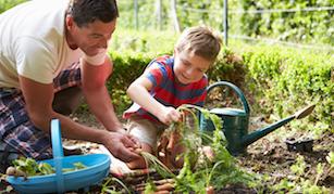 Home Garden Gift Voucher